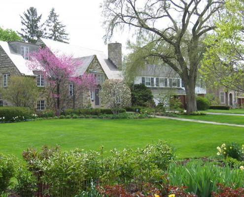 yard by professional lawn maintenance